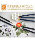 Akashiya Watercolore Brush Pen Sai - Set da 5 Colori (Primavera)