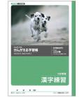 Quaderno Kyokuto - pratica della scrittura dei Kanji- 150 kanji per pagina