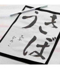 Tinta de caligrafía Kuretake BA7-18 (Bote 180 Ml.)