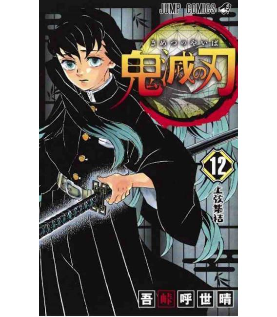 Kimetsu no Yaiba (Demon Slayer) - Vol 12