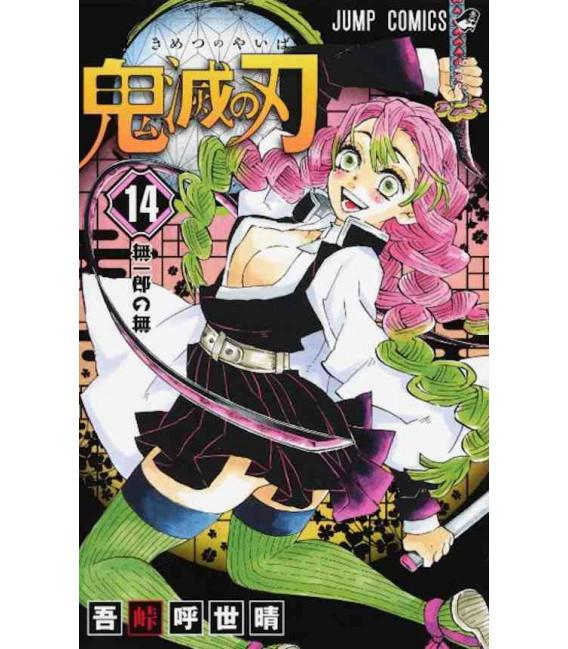 Kimetsu no Yaiba (Demon Slayer) - Vol 14