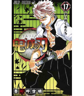 Kimetsu no Yaiba (Demon Slayer) - Vol 17